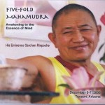 Five Fold CD